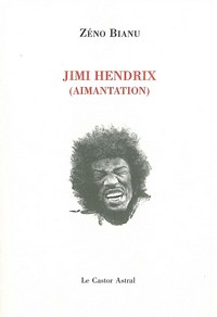 Jimi Hendrix (aimantation)